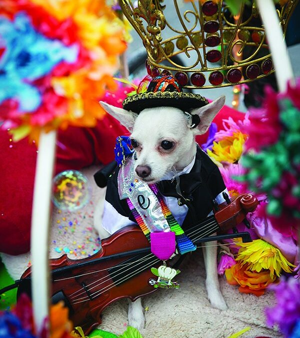Festival Fare, Live Music and Artsy Vendors Collide at the Funky Fiesta Favorite King William Fair