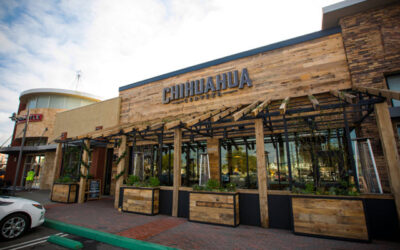 Costa Mesa-based microbrewery Chihuahua Cerveza wants to compete with the big dogs in the Mexican beer category